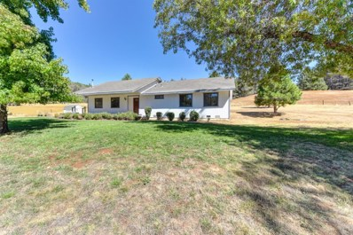 3881 Leisure Lane, Placerville, CA 95667 - MLS#: 18054483