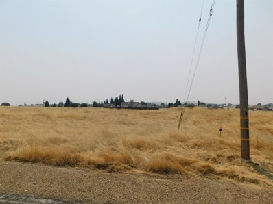 1960  Nabo Court, Ione, CA 95640 - MLS#: 18054665