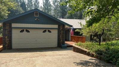 4770 Pony Express Trail, Camino, CA 95709 - MLS#: 18054707