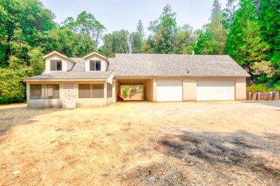 14471 Sandar Road, Pine Grove, CA 95665 - MLS#: 18054731