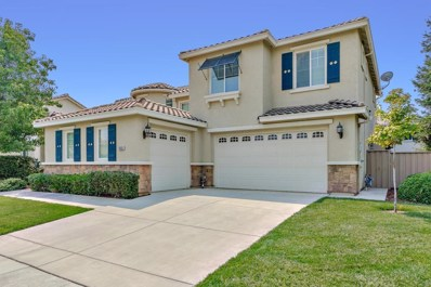 33503 Canvas Back, Woodland, CA 95695 - MLS#: 18055108