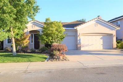 9498 Berkley Glen Way, Elk Grove, CA 95624 - MLS#: 18055128