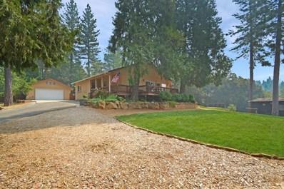 23070 Alaire Lane, Pioneer, CA 95666 - MLS#: 18055302