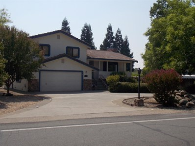 538 La Contenta Dr, Valley Springs, CA 95252 - MLS#: 18055510