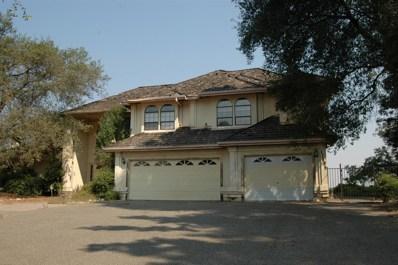 11405 Scarlet Oak Drive, Oakdale, CA 95361 - MLS#: 18055650