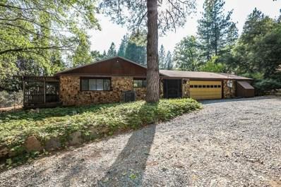 14439 Bobbie Lane, Pioneer, CA 95666 - MLS#: 18055697