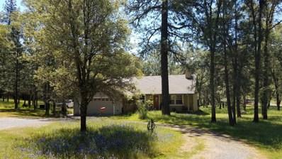 6221 Shasta Road, Garden Valley, CA 95633 - MLS#: 18055840
