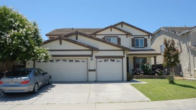 8821 Sailfish Bay Cir, Sacramento, CA 95828 - MLS#: 18056082