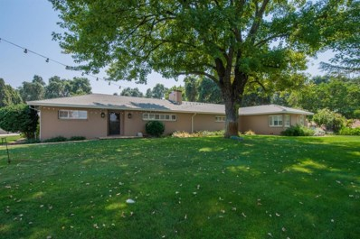 52333 Netherlands Road, Clarksburg, CA 95612 - MLS#: 18056253