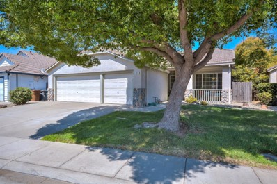 8831 Silverberry Avenue, Elk Grove, CA 95624 - MLS#: 18057153