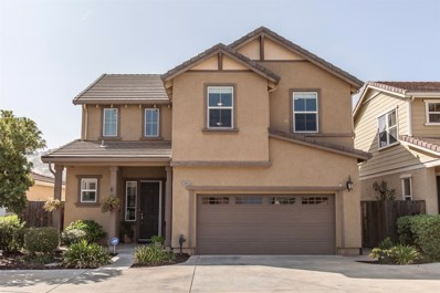 20863 Grapevine Drive, Patterson, CA 95363 - MLS#: 18057452