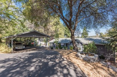 3206 Life Way, Placerville, CA 95667 - #: 18057526