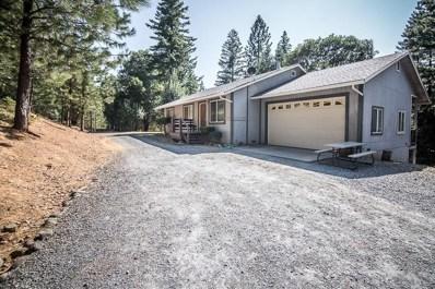 2548 Tinsel Trail, Georgetown, CA 95634 - MLS#: 18057833
