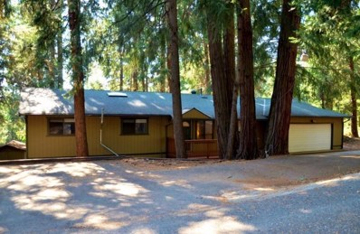 2854 Viona Road, Pollock Pines, CA 95726 - MLS#: 18057888