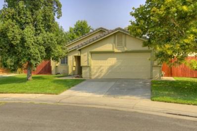 243 Spoonbill Lane, Galt, CA 95632 - MLS#: 18057929