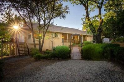 11451 Tabeaud Road, Pine Grove, CA 95665 - MLS#: 18057992