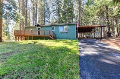 4829 Creekside Drive, Grizzly Flats, CA 95636 - MLS#: 18058109