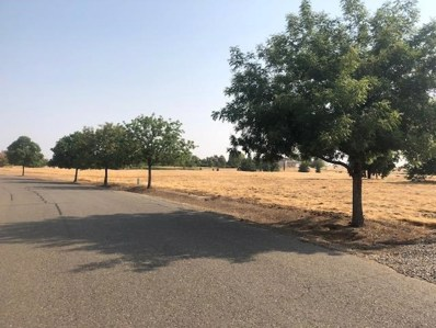 10673  Birch Ranch Drive, Sacramento, CA 95830 - MLS#: 18058183