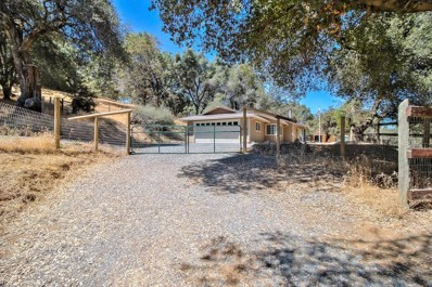 3980 Freedom Road, Placerville, CA 95667 - MLS#: 18058754