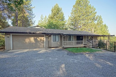 6766 Diablo View Trail, Placerville, CA 95667 - #: 18058885