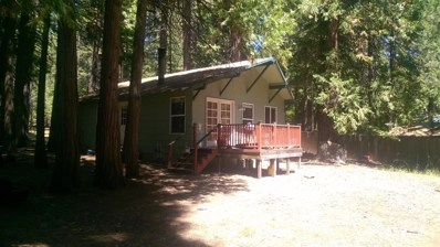 7717 Winding Way, Grizzly Flats, CA 95636 - MLS#: 18058993