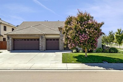 484 Van Slyke Court, Ripon, CA 95366 - MLS#: 18058997