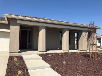 111 Peach Blossom Lane, Patterson, CA 95363 - MLS#: 18059397