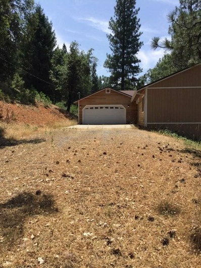 4975 Old Mine Road, Grizzly Flats, CA 95636 - MLS#: 18059533