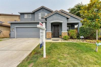 10169 Swann Way, Elk Grove, CA 95757 - MLS#: 18059552