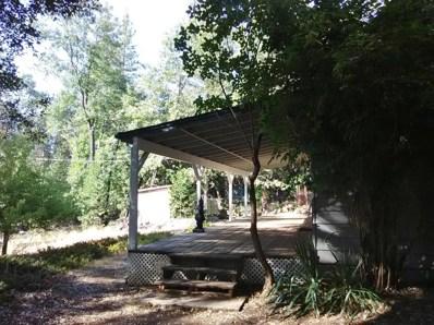 14559 Kathy Lane, Pioneer, CA 95666 - MLS#: 18059689