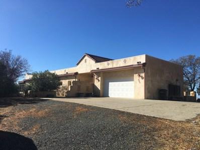9883 Hernandez Drive, La Grange Unincorp, CA 95329 - MLS#: 18060031