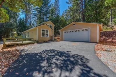17805 Mount Crossman, Pioneer, CA 95666 - MLS#: 18060245