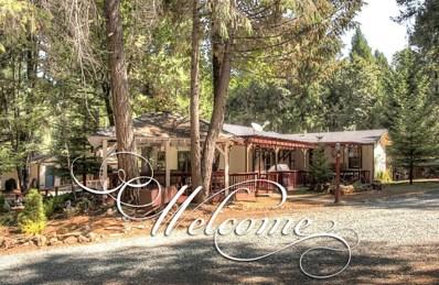 5181 Volcanoville Road, Georgetown, CA 95634 - MLS#: 18060579