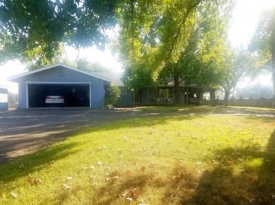 9973 Whalen, Valley Springs, CA 95252 - MLS#: 18060731
