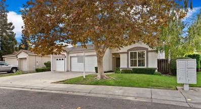 10005 River View Circle, Stockton, CA 95209 - MLS#: 18060786