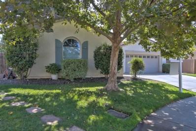 5529 Turtleview Court, Elk Grove, CA 95757 - MLS#: 18060826