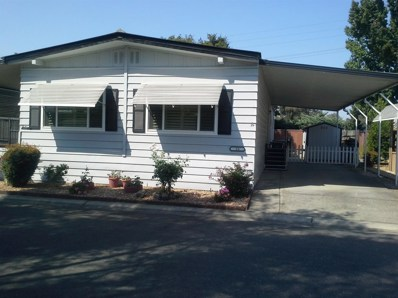 53 Camino Real, Lodi, CA 95240 - MLS#: 18060941