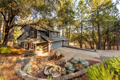 3102 Talking Mountain Trail, Cool, CA 95614 - MLS#: 18061003