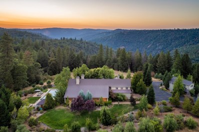 4000 Jacobsgaard Lane, Camino, CA 95709 - #: 18061137
