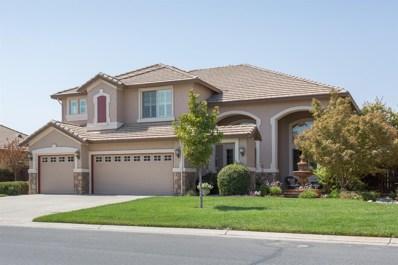 18188 Gadwall Street, Woodland, CA 95695 - MLS#: 18061237