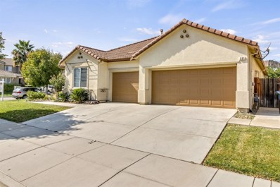 221 Abelia Lane, Patterson, CA 95363 - MLS#: 18061767