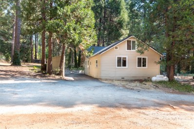 5800 Pony Express Trail, Pollock Pines, CA 95726 - MLS#: 18061851