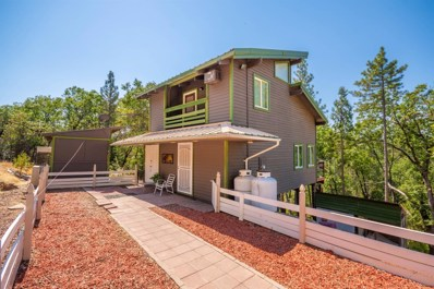 5530 Saw Mill Road, Placerville, CA 95667 - MLS#: 18062197
