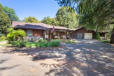 4001 Roadrunner Lane, Camino, CA 95709 - MLS#: 18062354