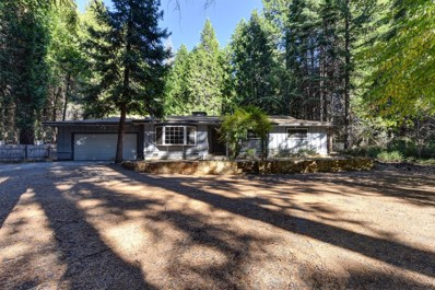 5200 Pony Express Trail, Camino, CA 95709 - MLS#: 18062484
