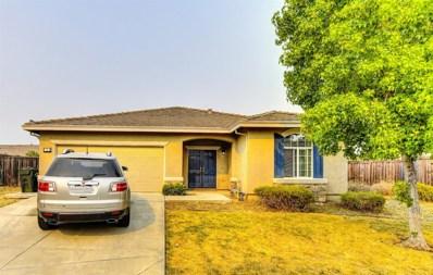 22 Van Horn Court, Sacramento, CA 95832 - MLS#: 18062836