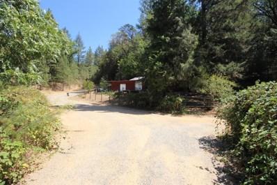 62 Plutes Way, Colfax, CA 95713 - MLS#: 18062933