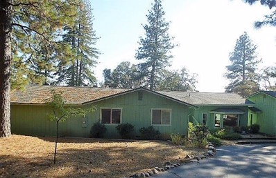 20170 Redwood Drive, Foresthill, CA 95631 - MLS#: 18062971