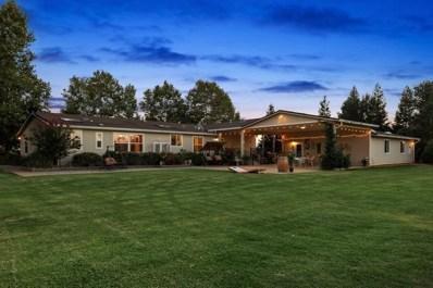 12887 Alta Mesa Road, Herald, CA 95638 - MLS#: 18063214