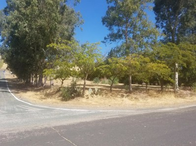 7752  Kirby, Valley Springs, CA 95252 - MLS#: 18063231